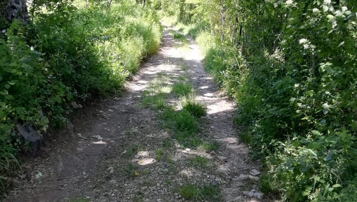 Strada sterrata1